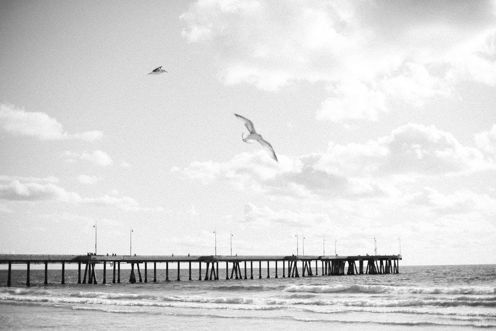 venice beach elopement-136.jpg