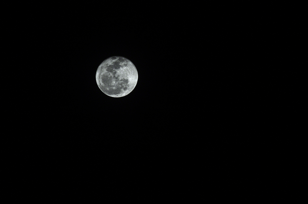 NOLA Moon