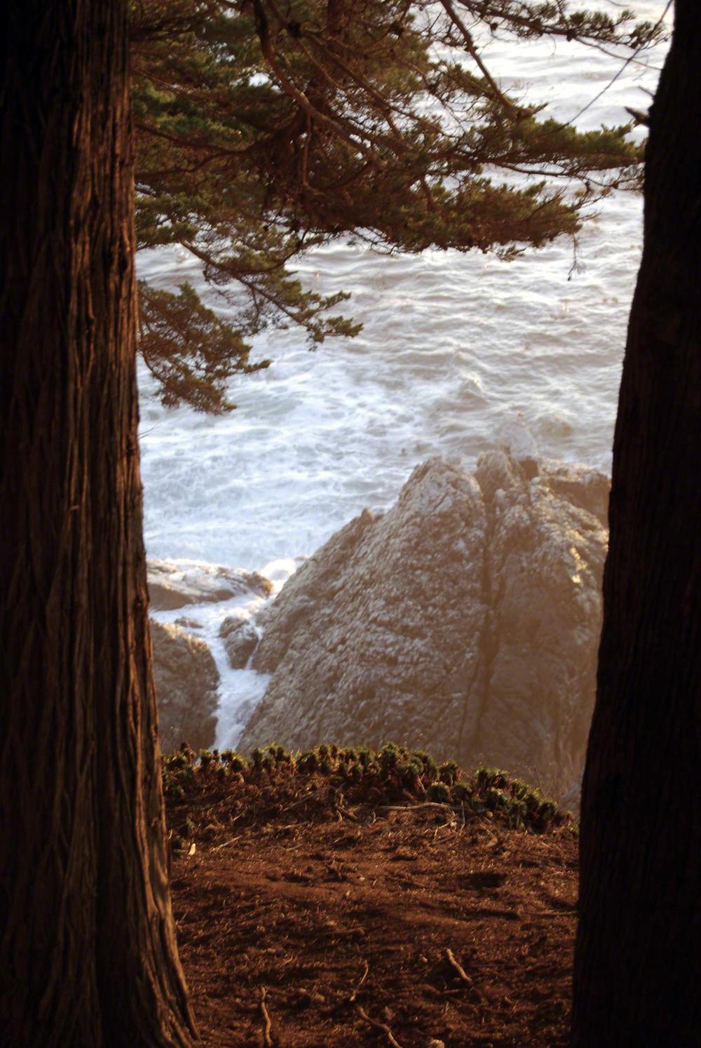 Natural Gateway