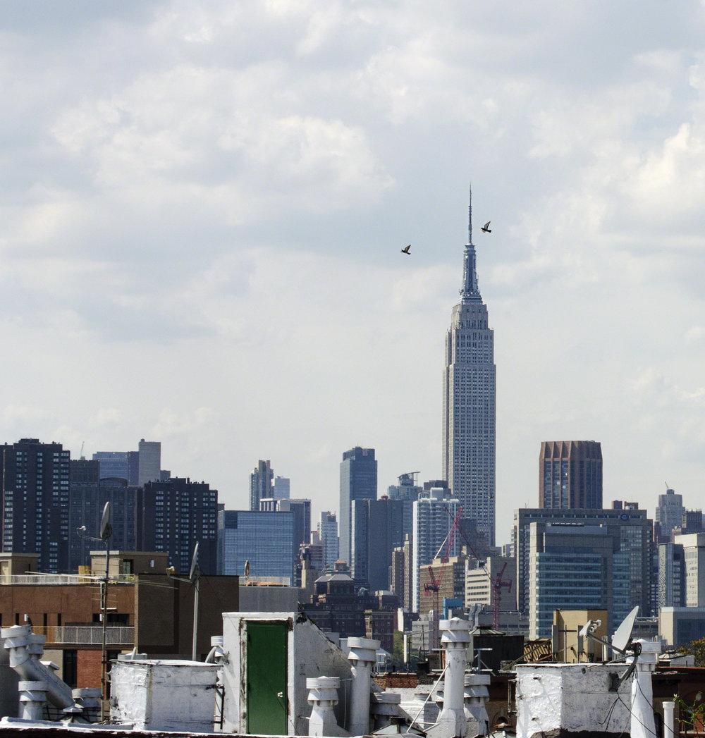 new york-2015-01.jpg