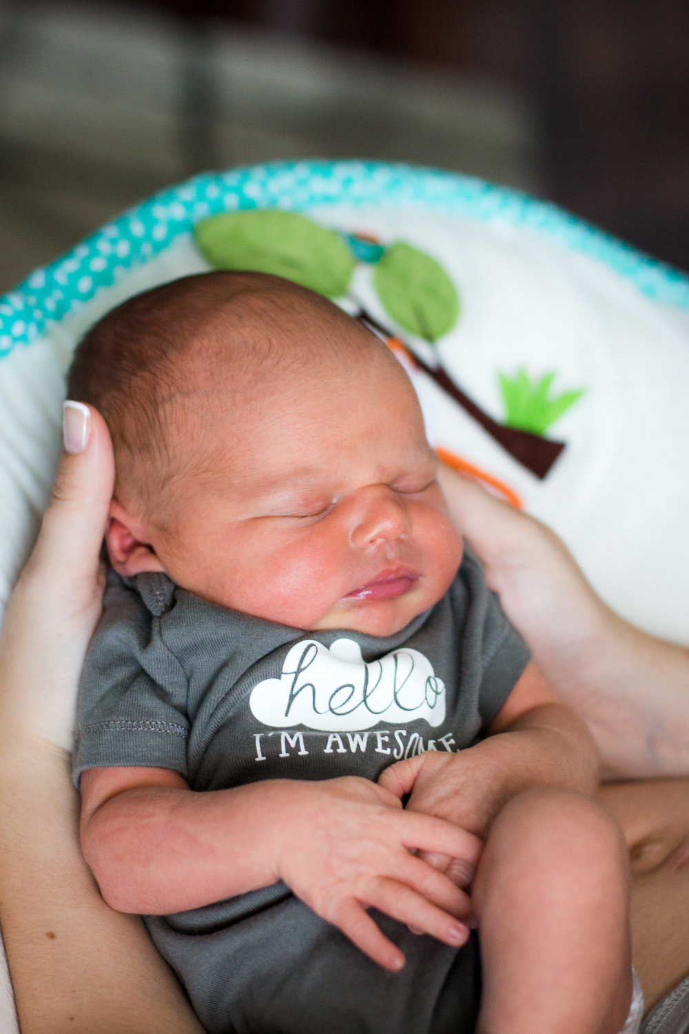 Raleigh NC New Born Portrait Photographer