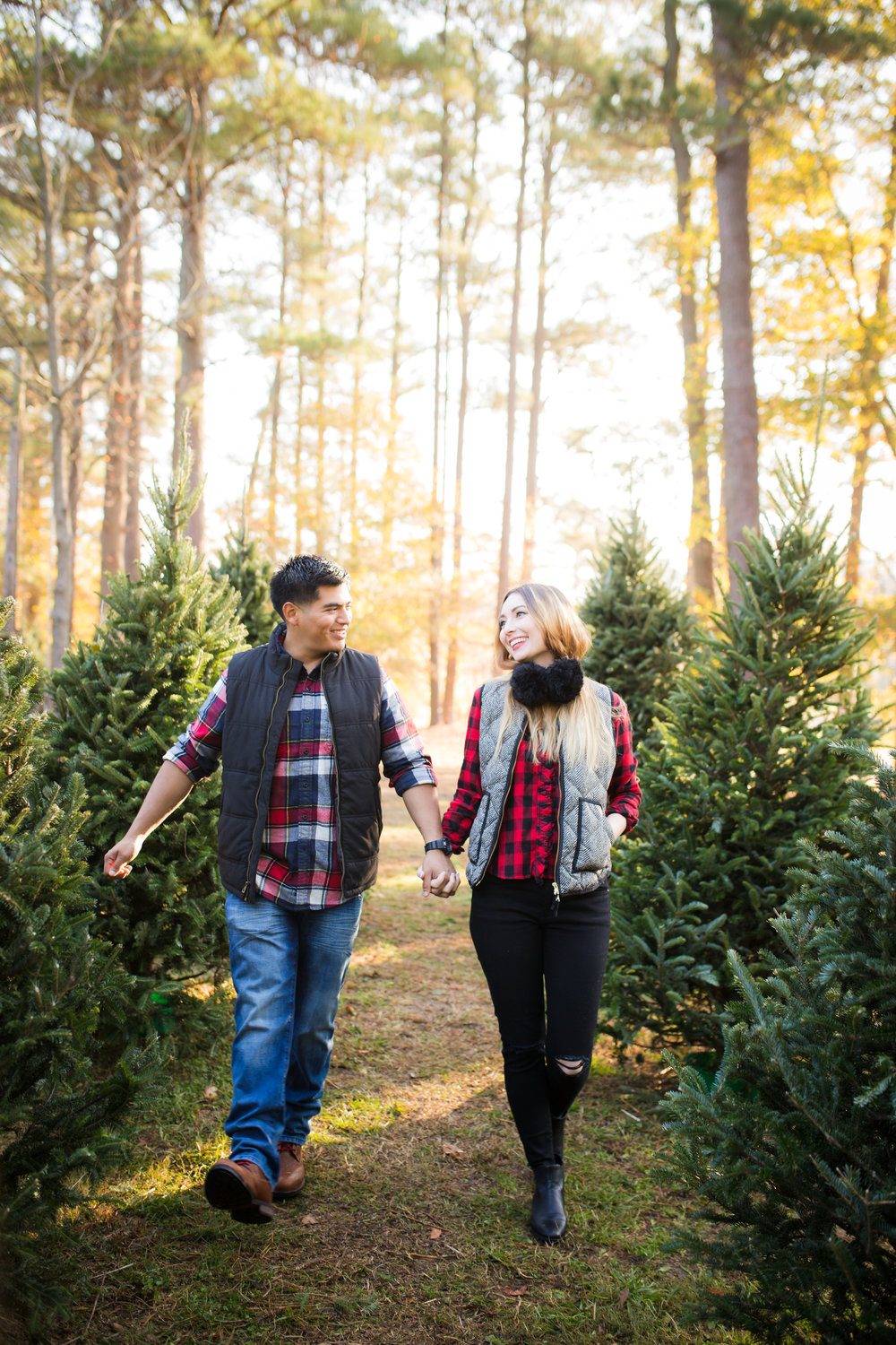 Nine19 Photography Raleigh NC Holiday Portrait Photographer-9402.jpg
