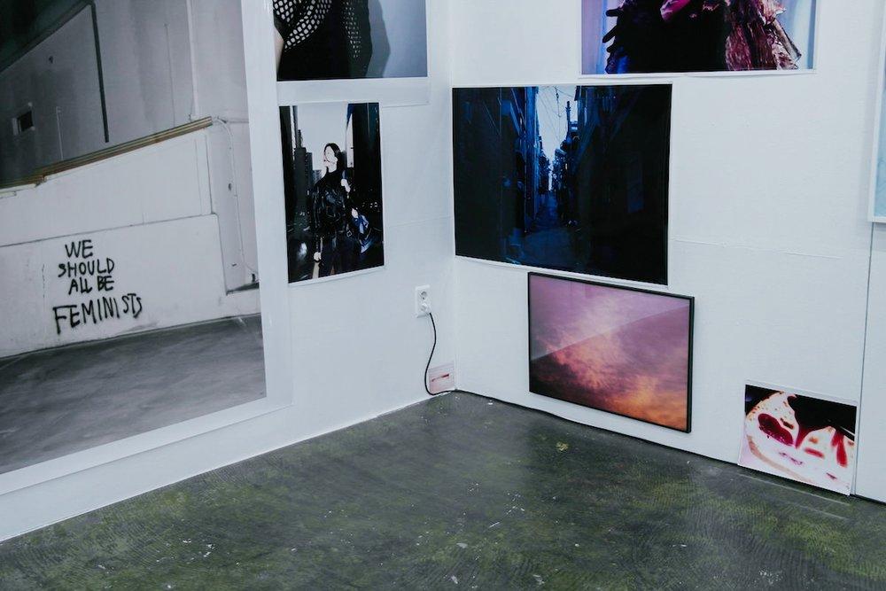 snakepool_exhibition_16.jpg