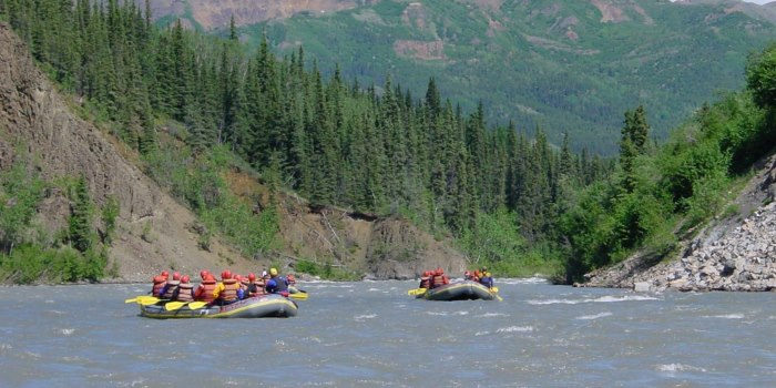Mt Fellows Nenana River edited 700x350.jpg