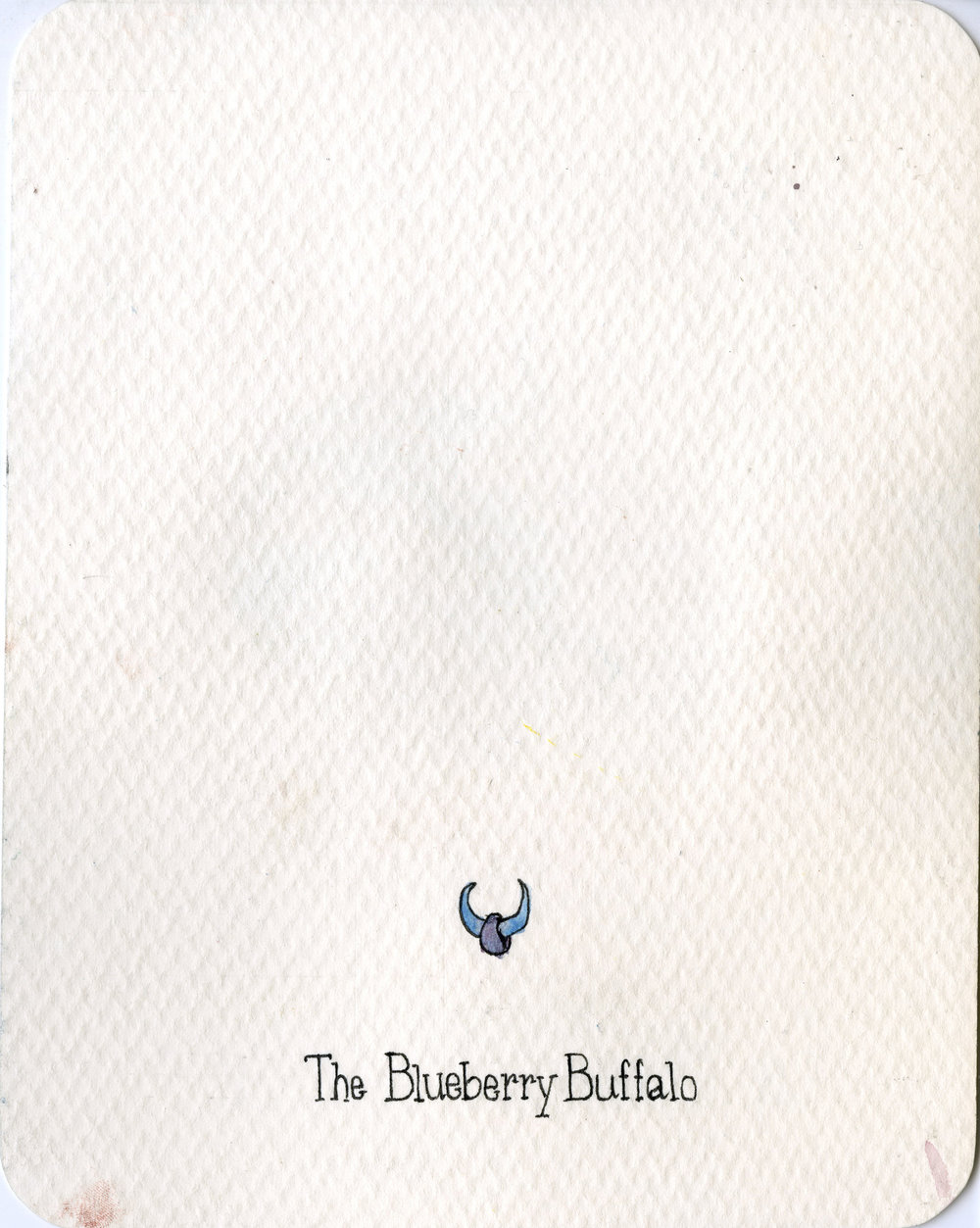 4. Blueberry Buffalo.jpg