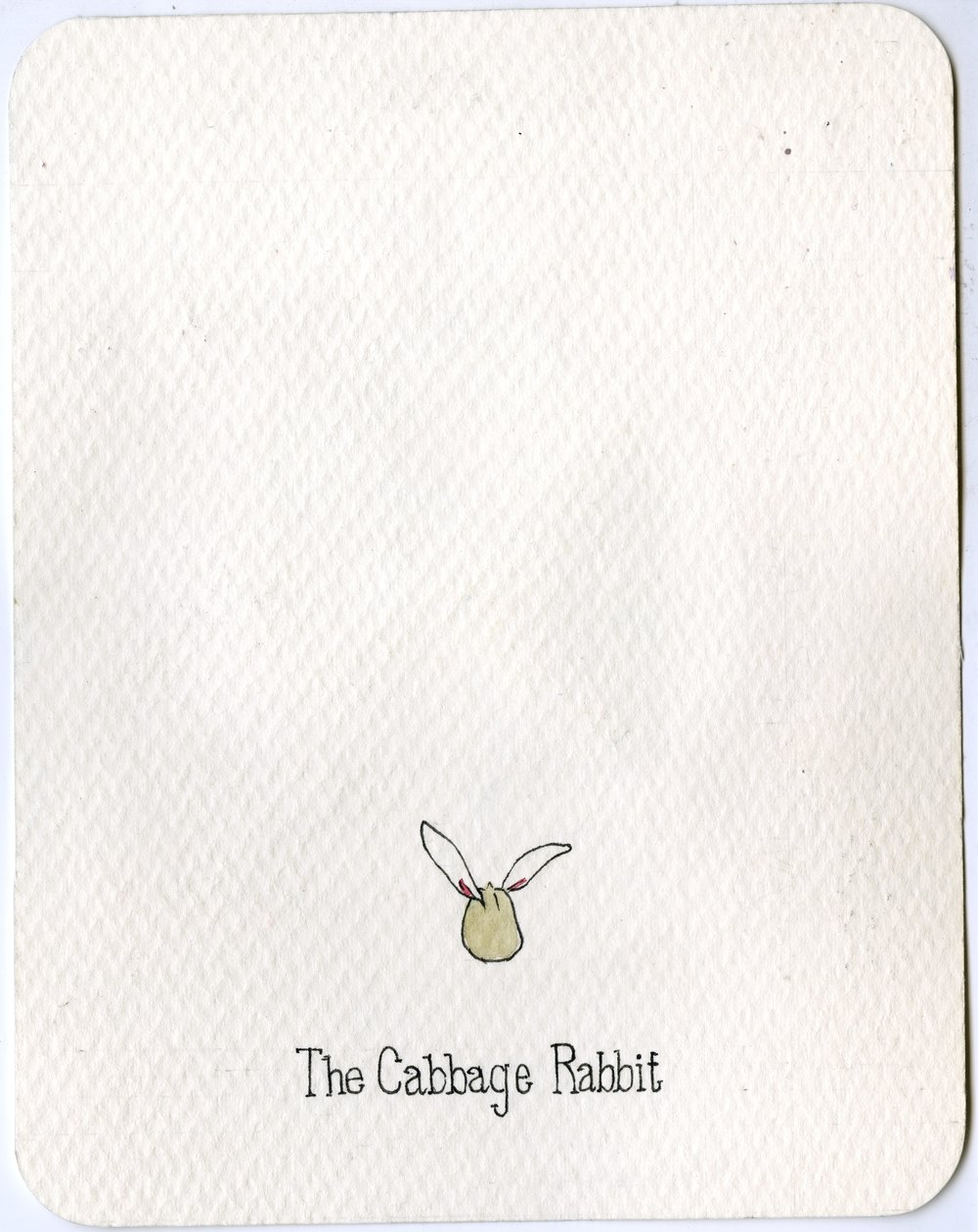 10. Cabbage Rabbit.jpg