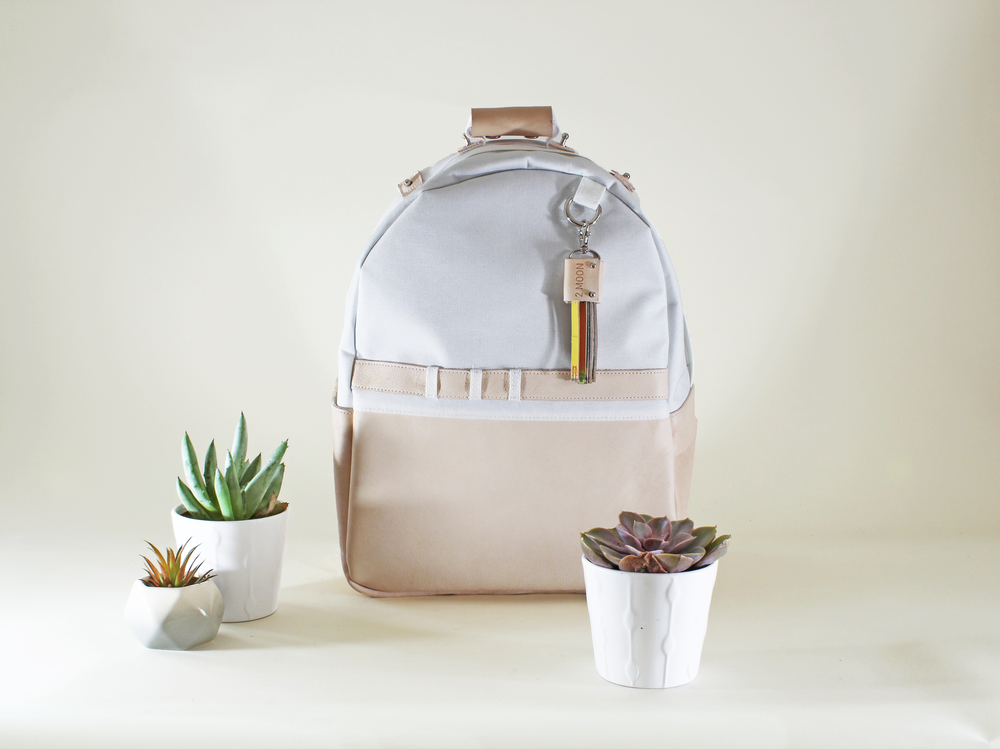 day backpack_front.png