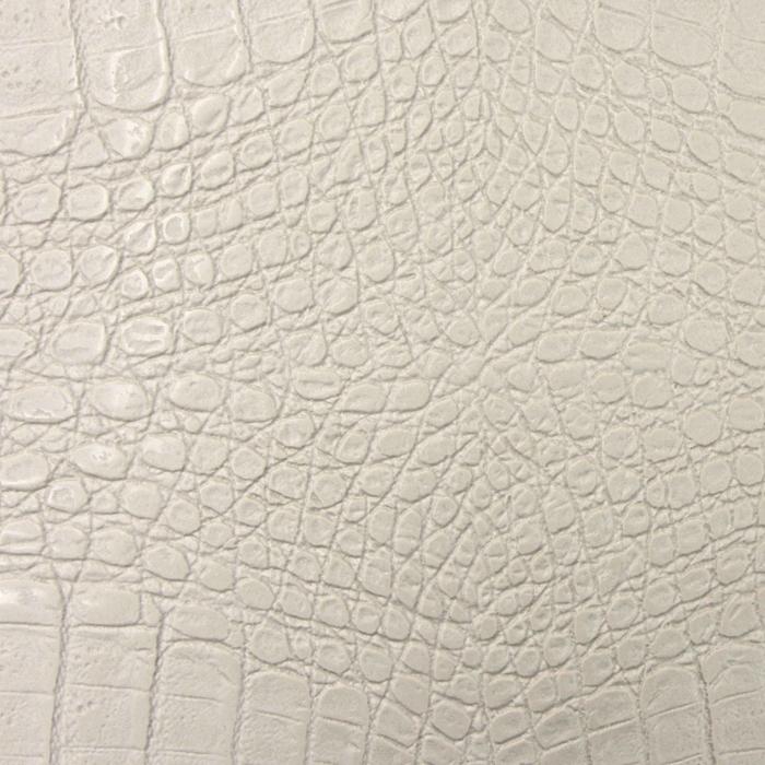 Crocodile Bianco