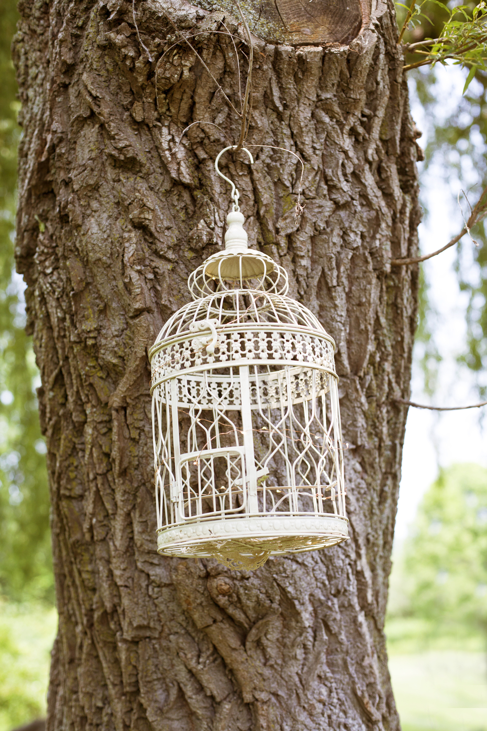 toronto_wedding_birdcage