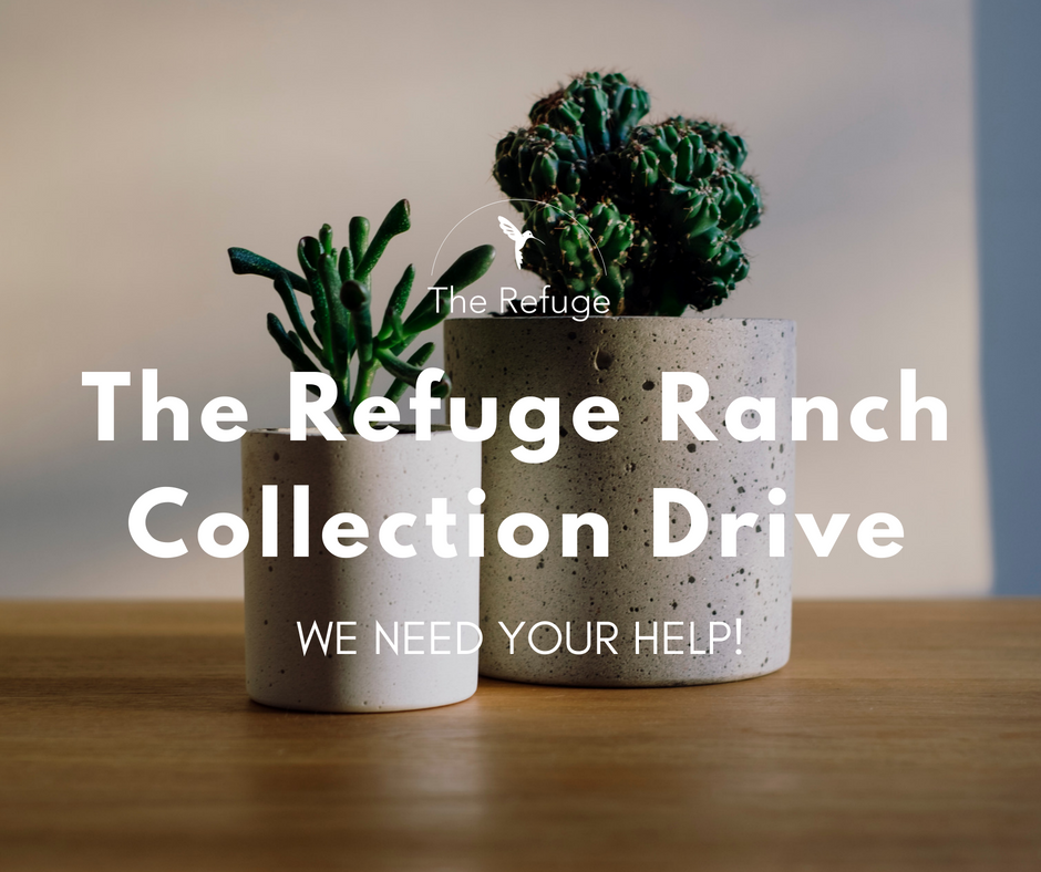 COLLECTION DRIVE   If your organization, office or group would like to help us collect NEW items in bulk for The Refuge Ranch, please email us at  info@therefugedmst.org .