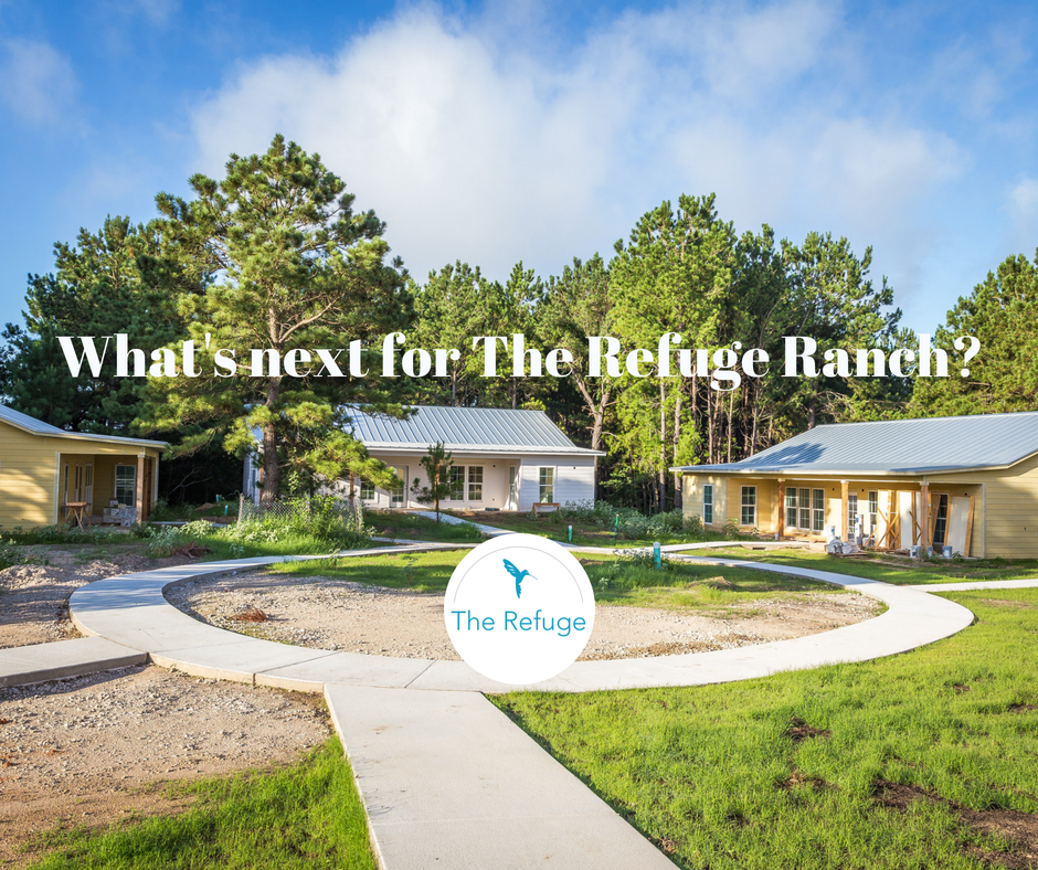 Click the image see the most recent photos of The Refuge Ranch.