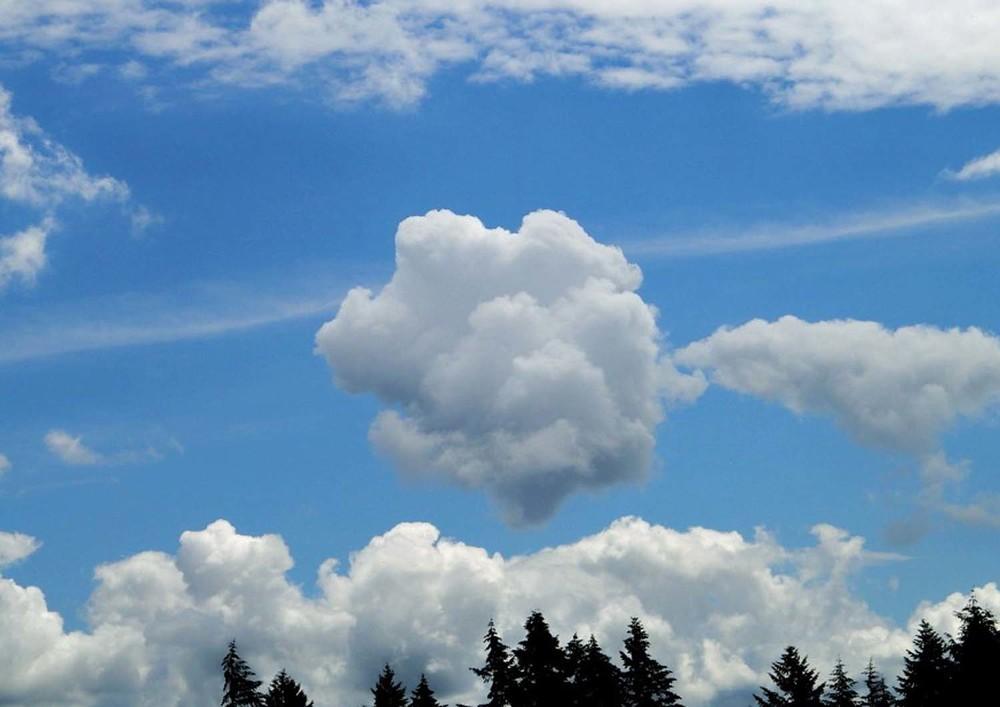6r-cloudsap.jpg