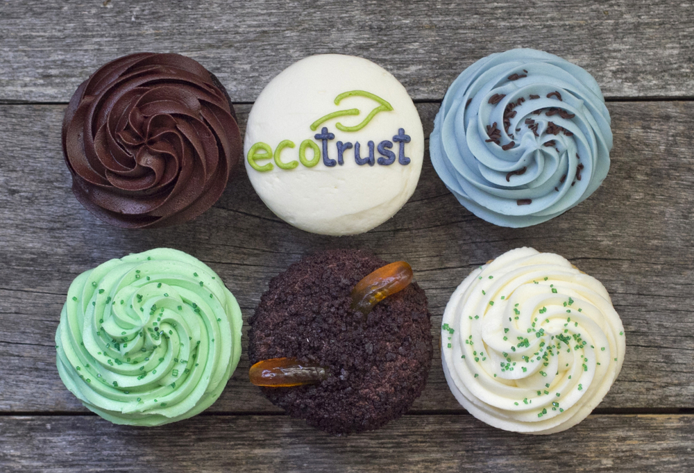 World Environment Day Cupcakes packs are $23.00 each.