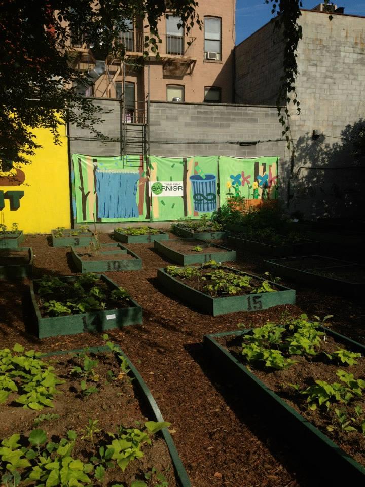 We built a Garnier Garden!