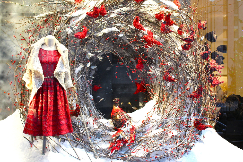 Window display at Anthropologie