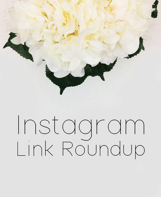 instagram link roundup.jpg