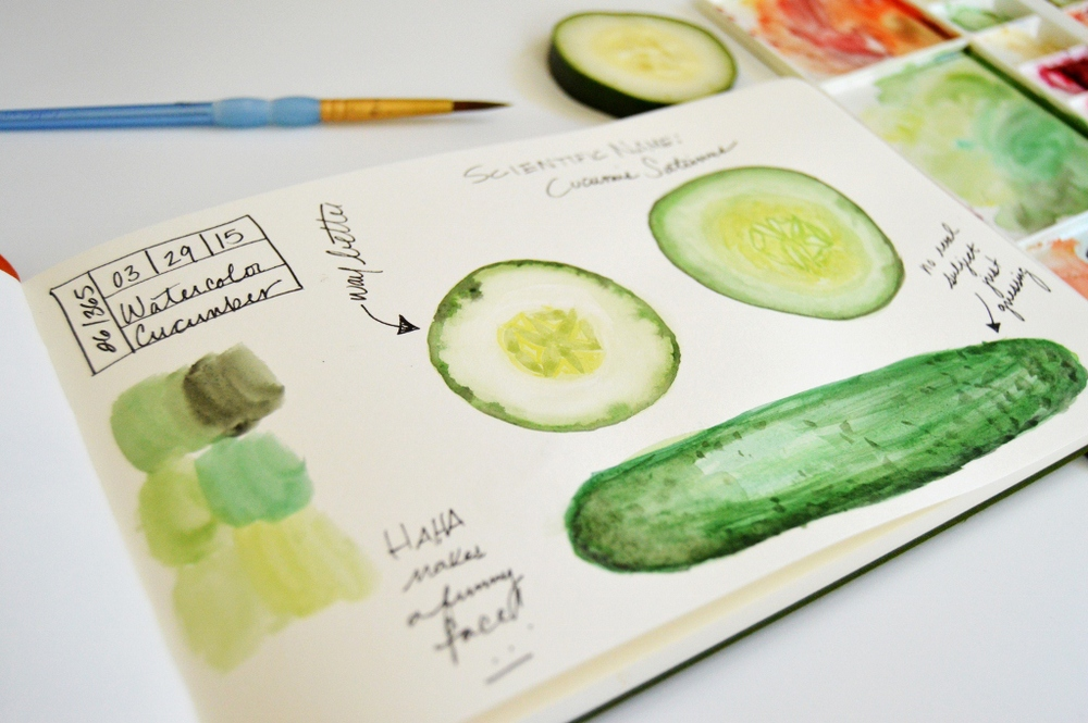 watercolor cucumber illustration