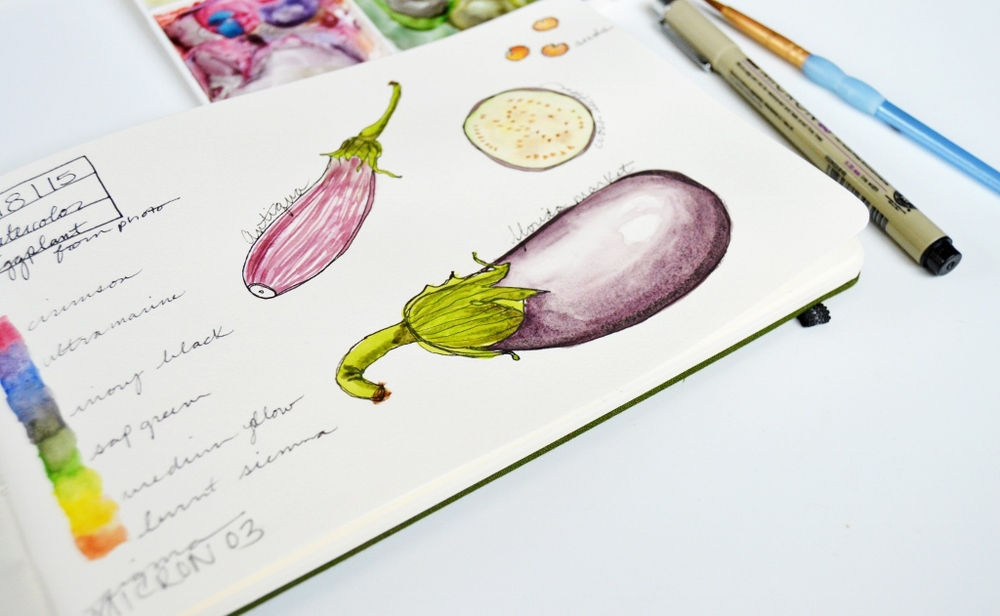 Watercolor Illustration | Eggplant