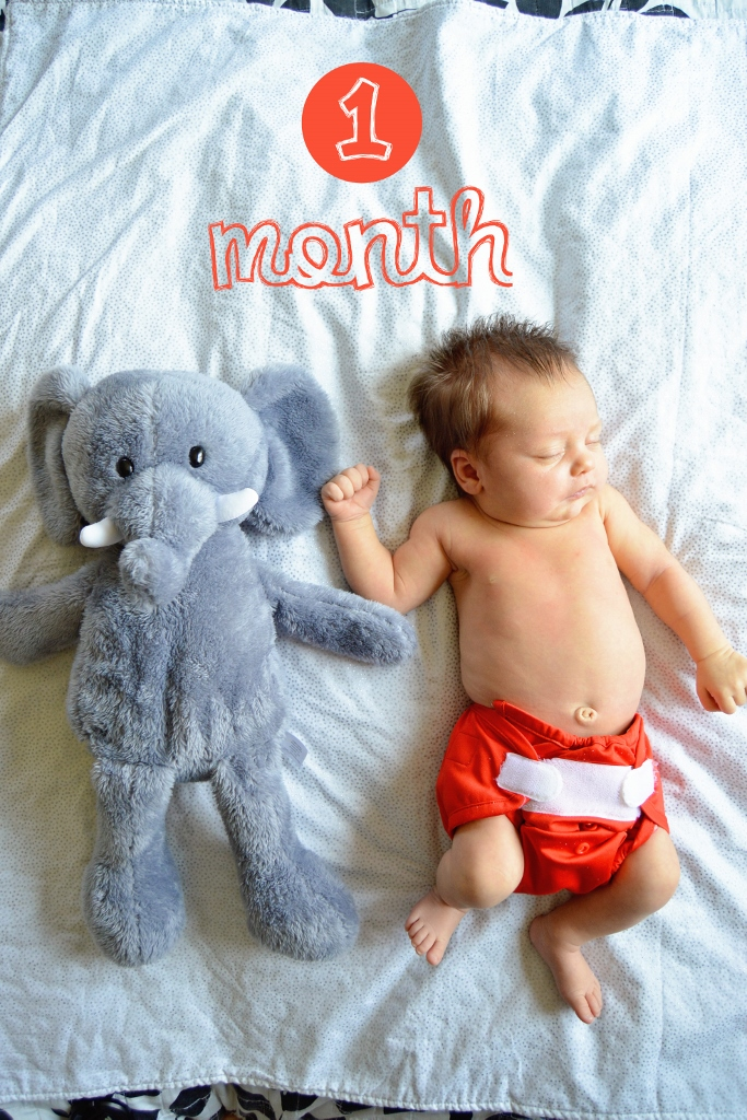Monthly baby photo one month