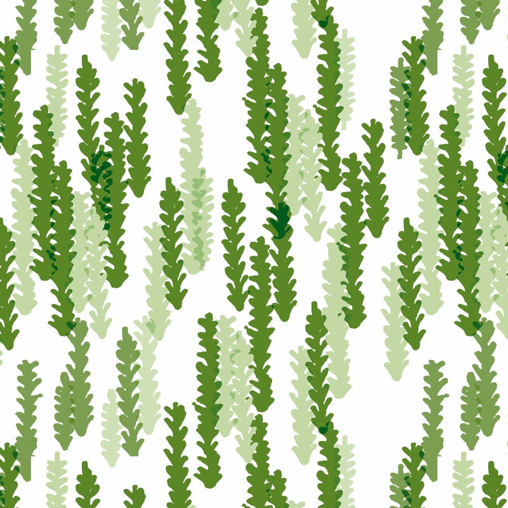Herbalist Patterns Color 2-07 (1280x1280).jpg