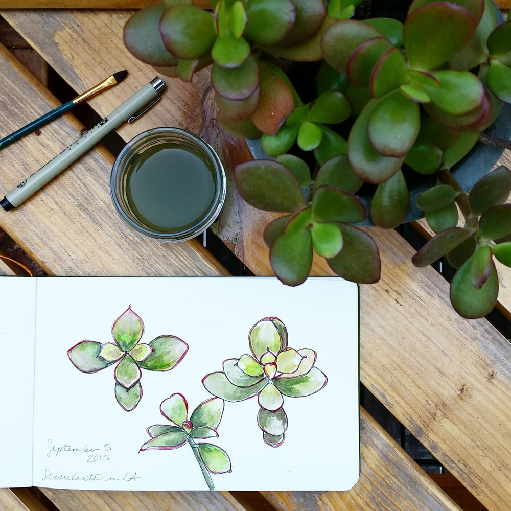 Year of Creative Habits | Watercolor Succulents