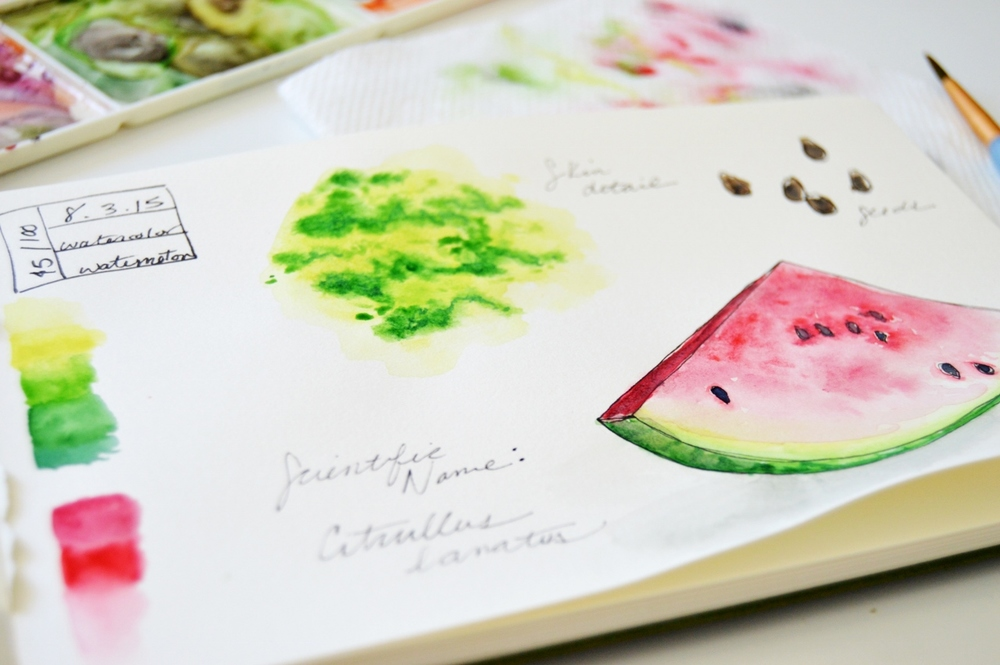 Year of Creative Habits | Watercolor Watermelon