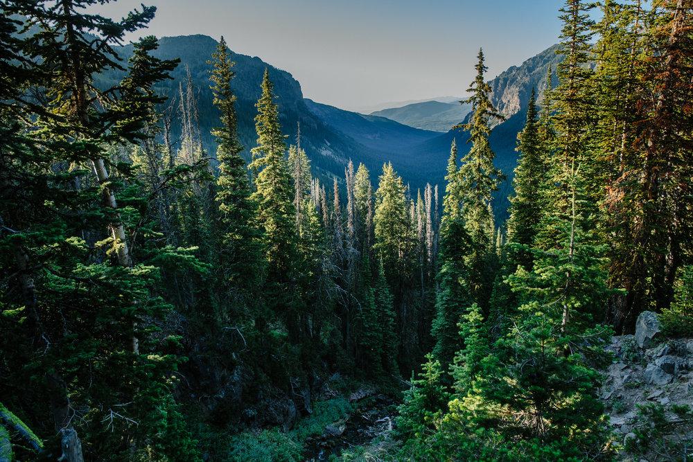 Hyalite-Porcupine-Buffalo-Horn Wilderness Study Area. Gallatin Range. Montana.