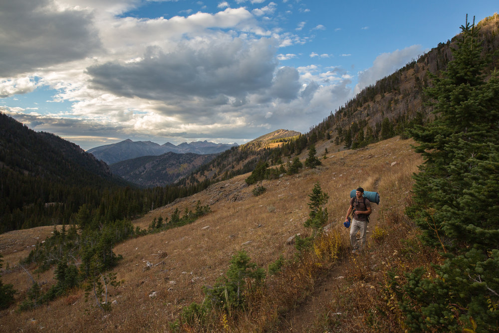 Lionhead Recommended Wilderness Area. Montana.