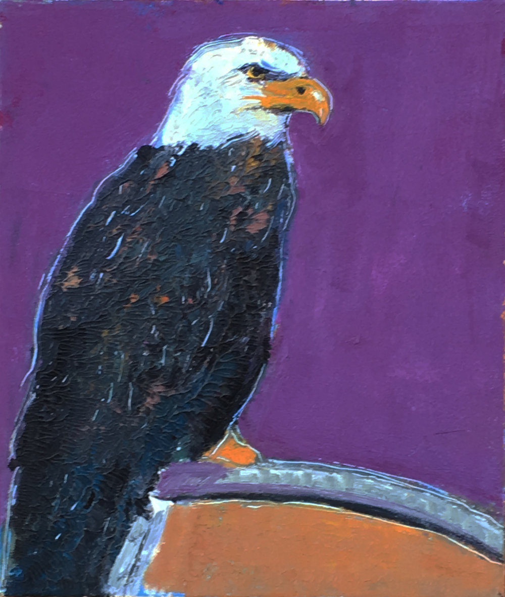 "Bald Eagle 24x20"""