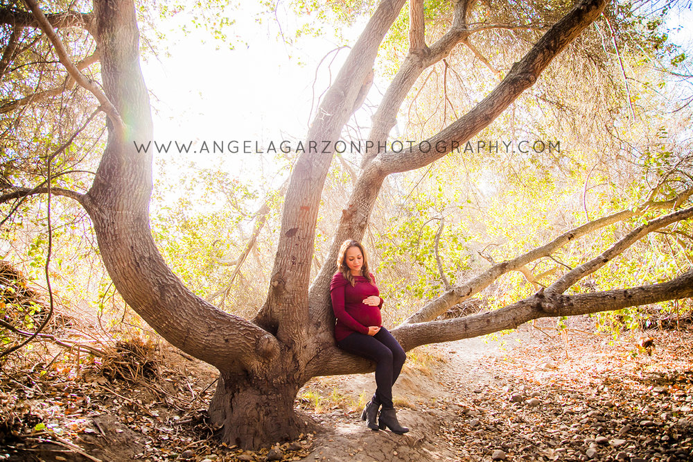 san-diego-maternity-pregnancy-photographer-pictures