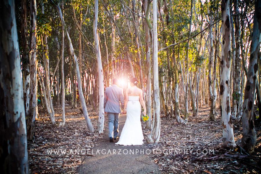 lens-flare-wedding-eucalyptus-grove-la-jolla.JPG