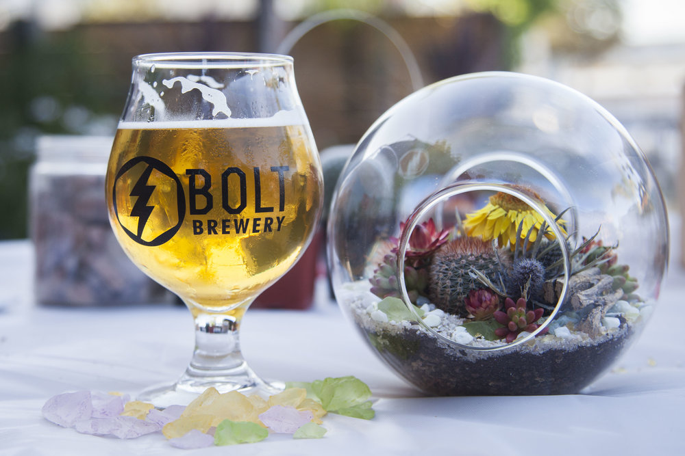 bolt-brewery-craft-beer-succulent-globe.jpg