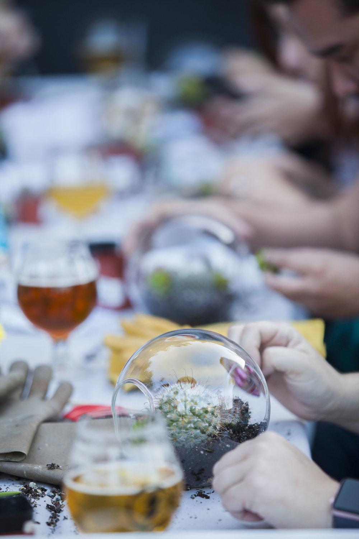 succulent-globe-workshop-stemtations.jpg