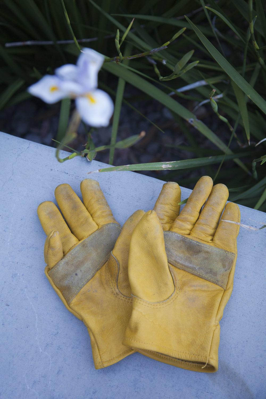 gardening-gloves-yellow.jpg