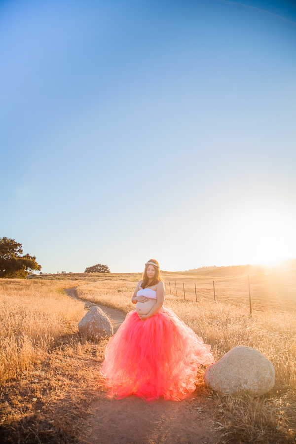 ramona-grasslands-session-family-maternity-san-diego-photographer-pink-tutu-pregnant-belly-mountains-adventure-7.jpg