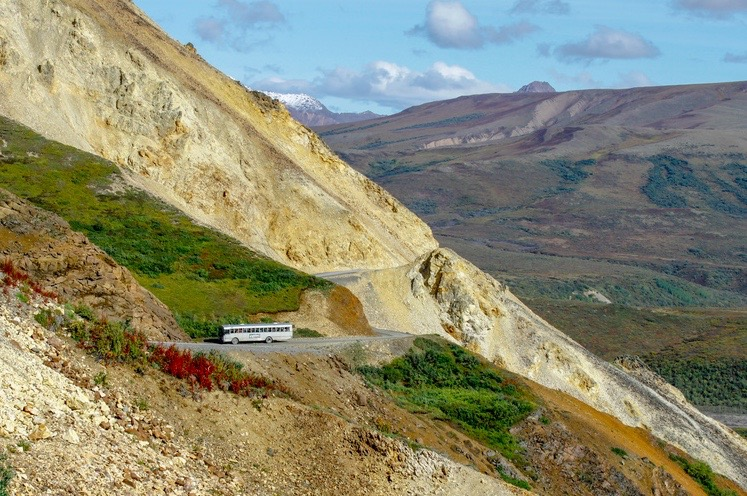 A bus driving the Denali park road