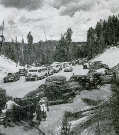 Yellowstone in 1946