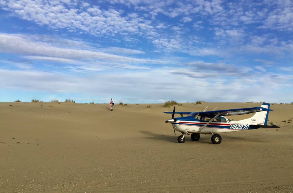 Our valiant steed on the Great Kobuk Sand Dunes