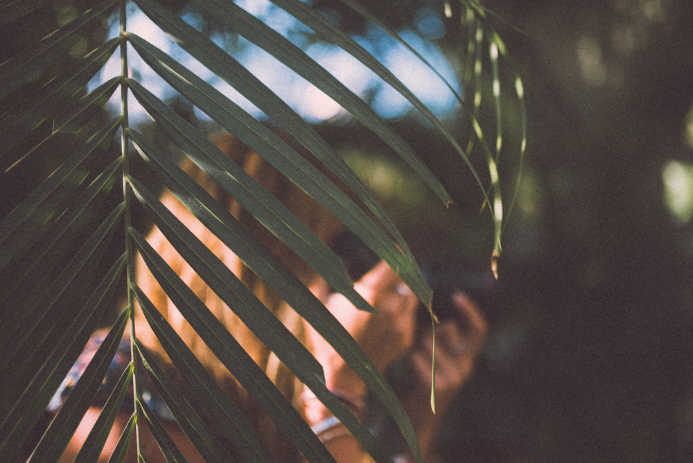 blunt2-6.jpg