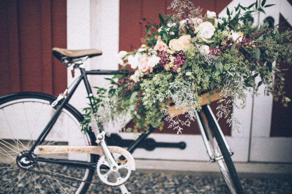 flowerbike.jpg