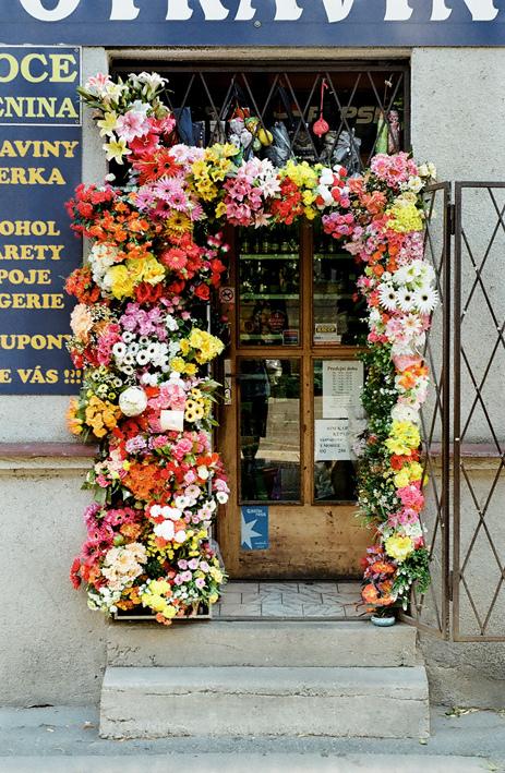 A beautiful entryway
