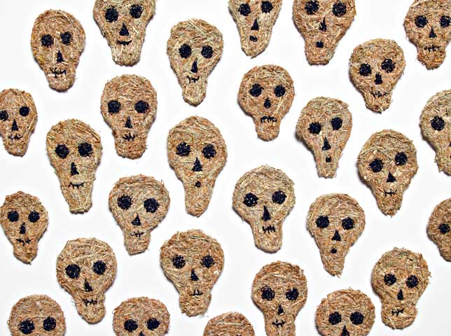 2009-kangaroo-grass-skulls.jpg