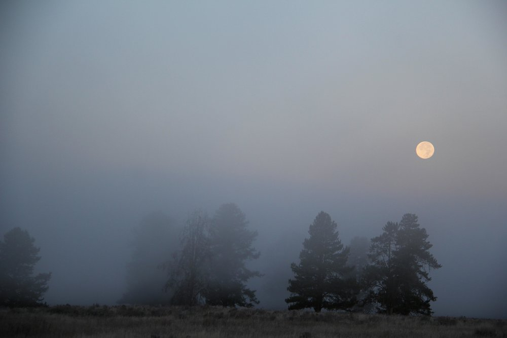 Early morning moon, Henry's Fork ID