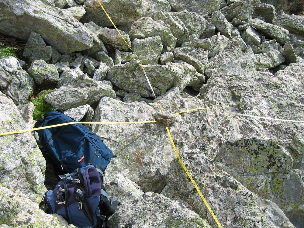 Pika surveying Pecos Wilderness NM