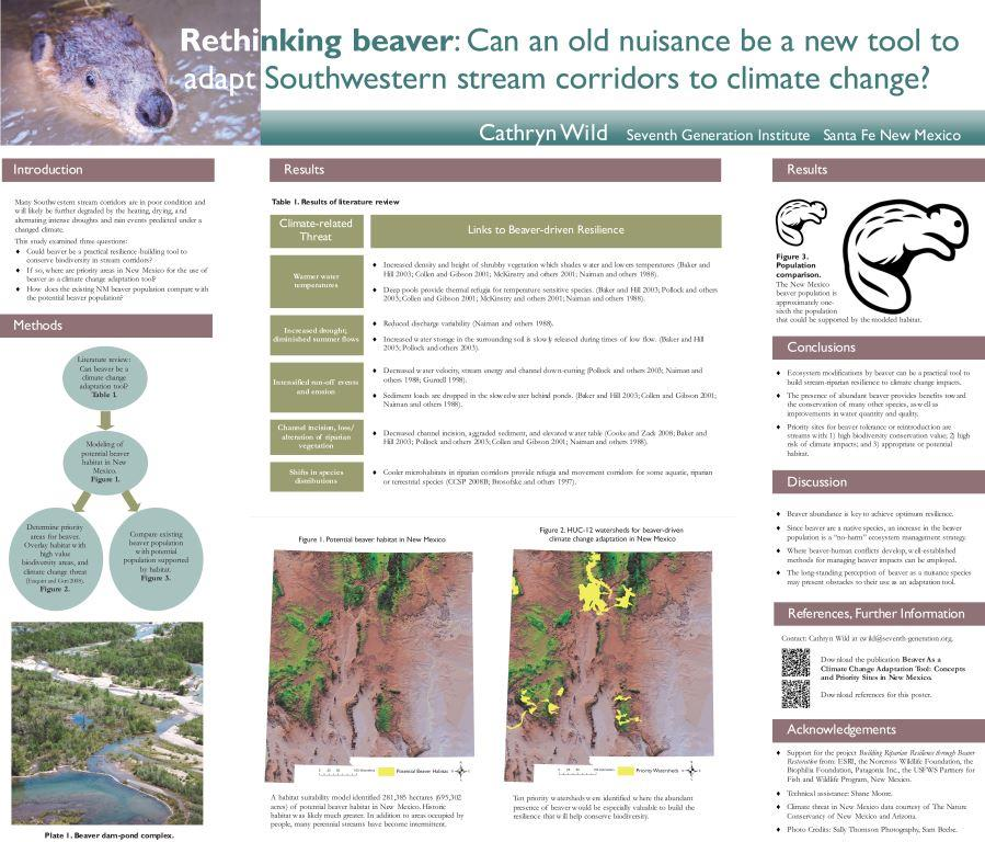 Rethinking beaver final poster.jpg