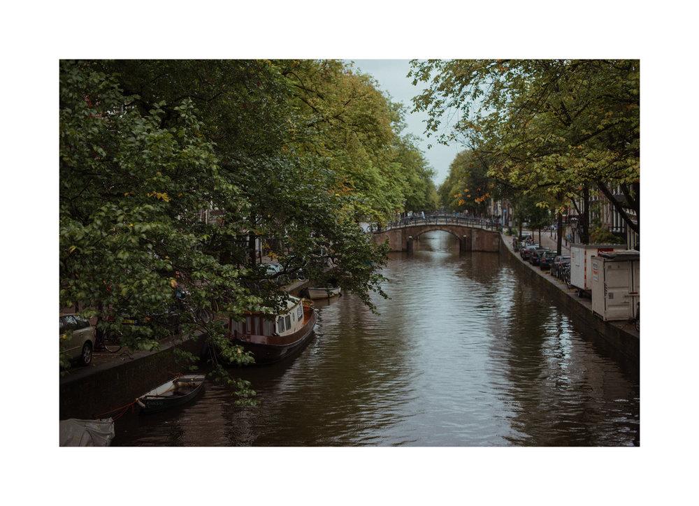 LucWilsonAmsterdam2.jpg