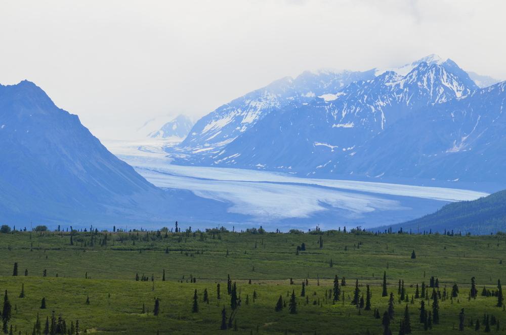 04 Nelchina Glacier.JPG