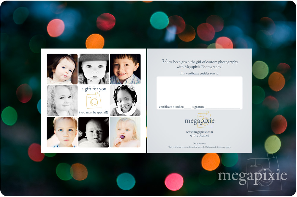 Raleigh Photography Gift Certificates