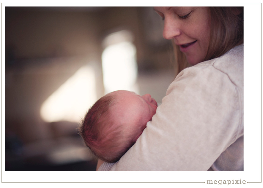 Hillsborough Newborn Photographer