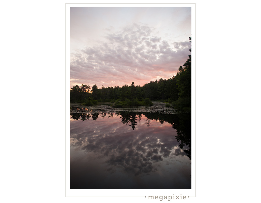 Lilypond Maine Landscapes Photographer